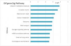 通路的显著性分析——Pathway Enrichment Analysis