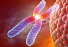 遗传疾病检测